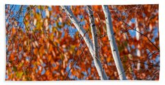 Beach Towel featuring the photograph Aspen by Sebastian Musial