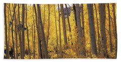 Aspen Trees In Autumn, Colorado, Usa Beach Sheet