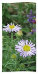 Asters In Close-up Beach Sheet