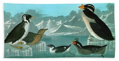 Audubon Auks Beach Towel