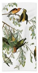 Audubon Crossbill Beach Towel