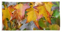 Autumn Acer Leaves Beach Sheet