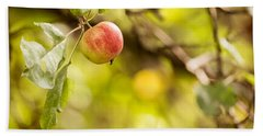 Autumn Apple Beach Towel by Matt Malloy
