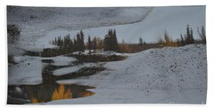 Autumn Arising Beach Towel by Brian Boyle