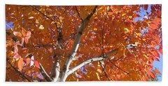 Autumn Aspen Beach Sheet