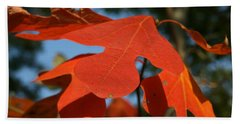 Beach Towel featuring the photograph Autumn Attention by Neal Eslinger