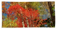 Autumn Colors Beach Sheet by Patrick Shupert