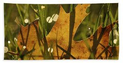 Autumn Dew Beach Towel by Penny Meyers