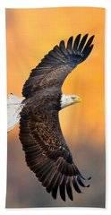 Autumn Eagle Beach Towel
