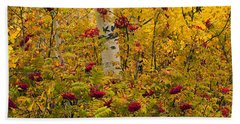 Autumn Forest Colors Beach Towel