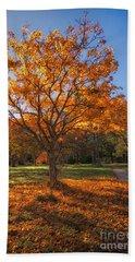 Autumn Glow Beach Sheet
