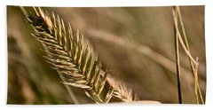 Autumn Grasses Beach Towel