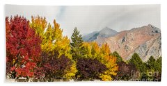 Beach Towel featuring the photograph Autumn In The City by Sue Smith