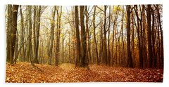 Autumn In The Forest With Red And Yellow Leaves Beach Sheet