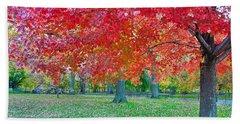 Autumn In Central Park Beach Sheet