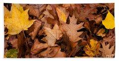 Beach Towel featuring the photograph Autumn Leaves by Matt Malloy