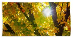 Beach Towel featuring the photograph Autumn Morn by Dee Dee  Whittle