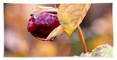 Autumn Rosebud Beach Sheet by Rona Black