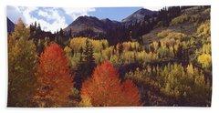 Autumn Splendor Beach Sheet