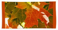 Autumn Sunlight Beach Towel