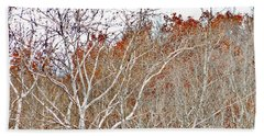 Beach Sheet featuring the photograph Autumn Sycamores by Bruce Patrick Smith