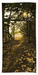 Autumn Trail In Woods Beach Towel