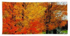 Beach Sheet featuring the photograph Autumn Trees By Barn by Rodney Lee Williams