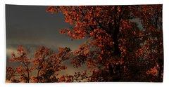 Autumn's First Light Beach Sheet