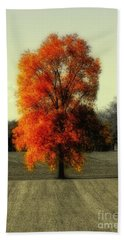 Autumn's Living Tree Beach Towel