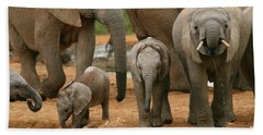 Baby African Elephants Beach Towel