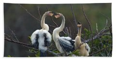 Baby Anhinga Beach Towel by Mark Newman