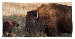 Baby Bison Meets Daddy Beach Towel