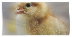 Baby Chicken Beach Sheet