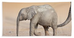 Baby Elephant  Beach Towel
