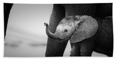 Baby Elephant Next To Cow  Beach Towel