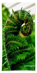 Baby Fern Beach Towel