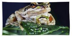 Baby Frog And Mama Frog Beach Towel