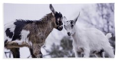 Baby Goats 2 Beach Towel