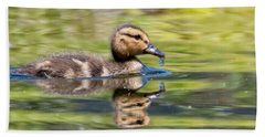 Baby Mallard Beach Towel