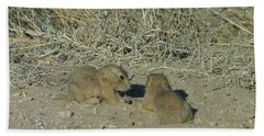 Baby Prairie Dog Beach Sheet