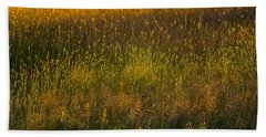 Beach Towel featuring the photograph Backlit Meadow Grasses by Marty Saccone