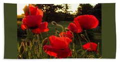 Backlit Red Poppies Beach Sheet by Mary Wolf