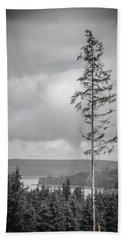 Tall Tree View Beach Towel