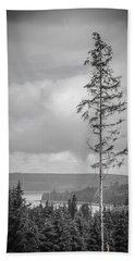 Tall Tree View Beach Sheet