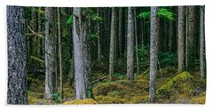 Inside View Backroad Forest Beach Towel
