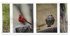 Backyard Bird Series Beach Towel by Heather Applegate