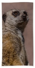 Bad Whisker Day Beach Towel