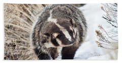 Badger In The Snow Beach Sheet