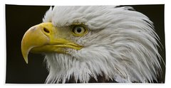 Beach Towel featuring the photograph Bald Eagle - 7 by Heiko Koehrer-Wagner