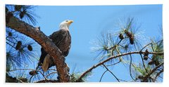 Beach Towel featuring the photograph Bald Eagle by Geraldine DeBoer